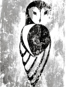 artsy-owl's Profile Picture