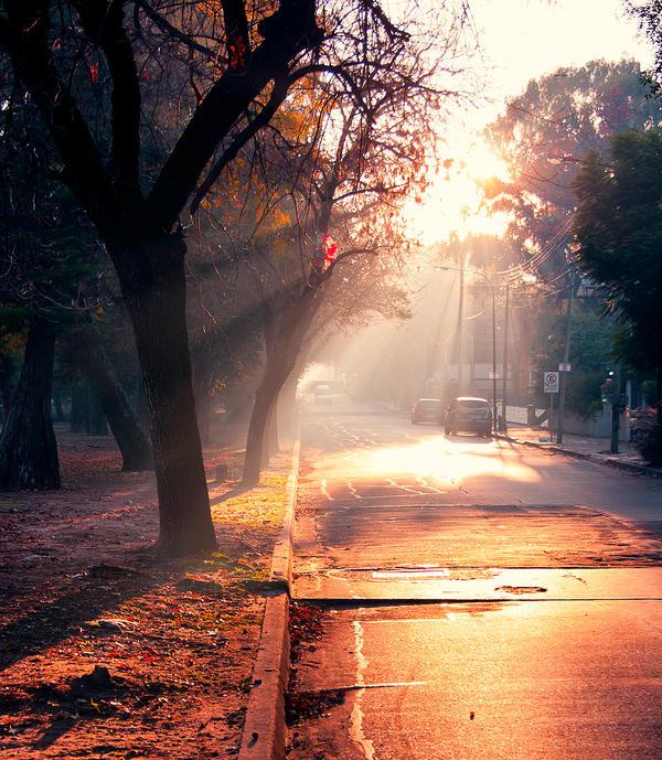 sun morning III by demor