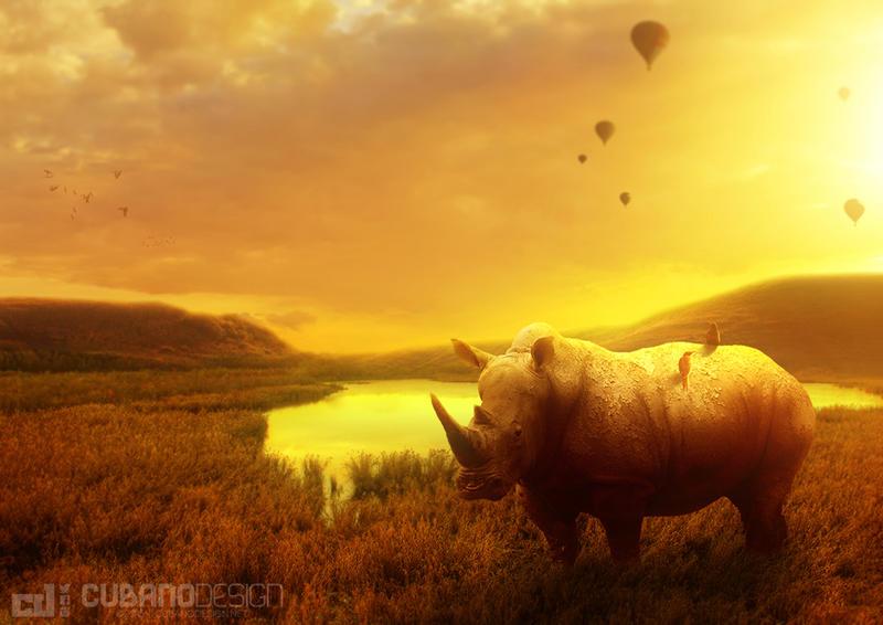 Rhino by CubanoDesign