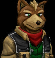Fox McCloud by CarnoseWyvern