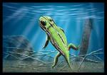 Amphibamus grandiceps