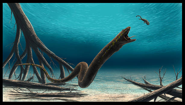 Ophiderpeton by dustdevil