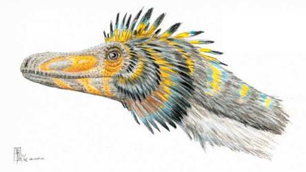 Feathered Velociraptor by dustdevil