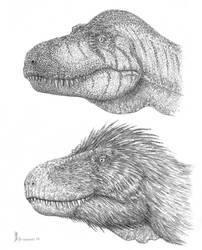 Trex heads variations by dustdevil