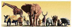Animals by dustdevil