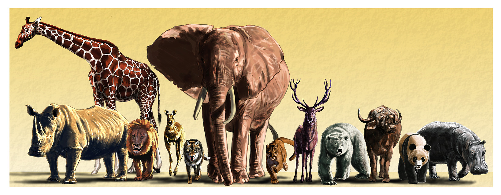takino chatrooms Takino yumiko (yumirin) discussion in 'stu48 members' started by ithebigc, may 9, 2017.