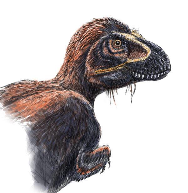 Tyrannosaurus_rex_by_dustdevil.jpg