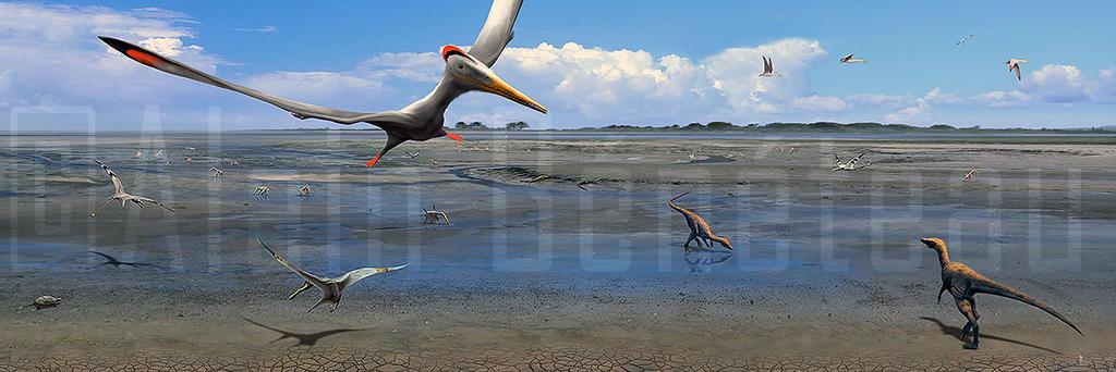 La plage aux pterosaures - Crayssac - France