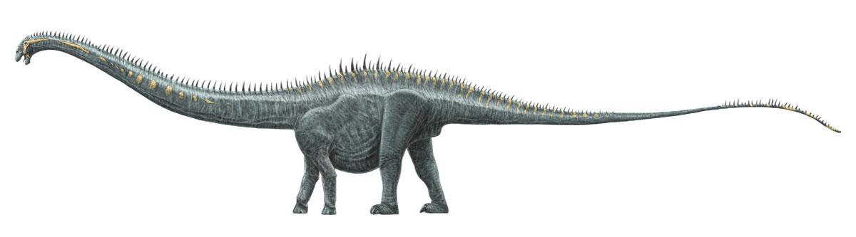 Supersaurus by dustdevil