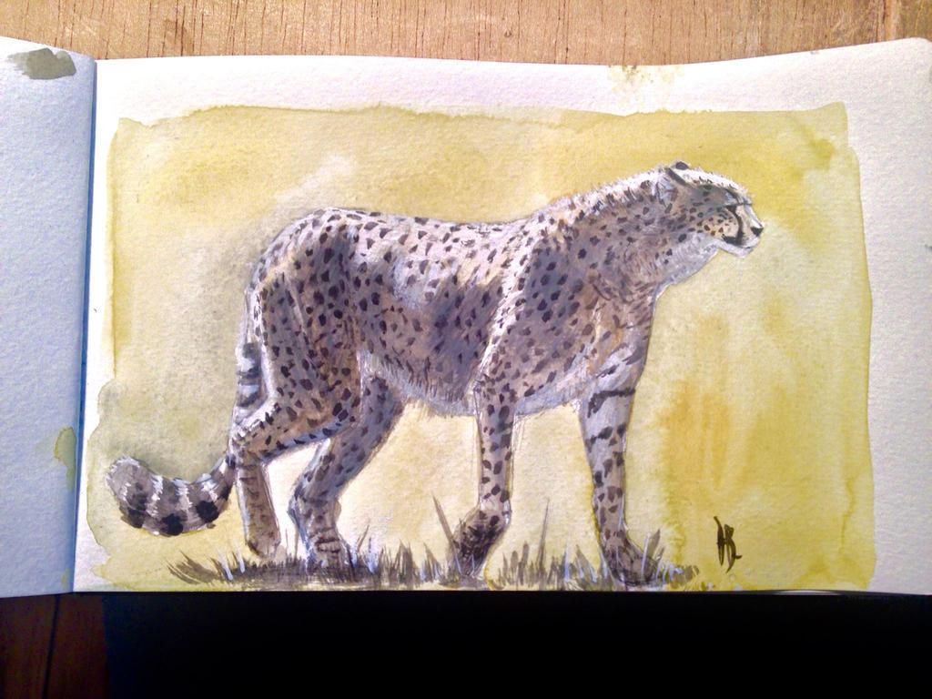 Guepard by dustdevil