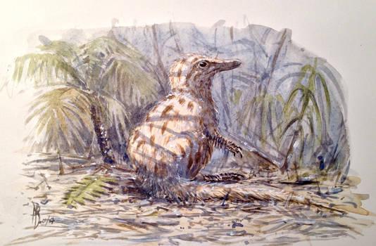 Young Coelurosaur