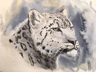 Snow Queen (Panthera uncia)