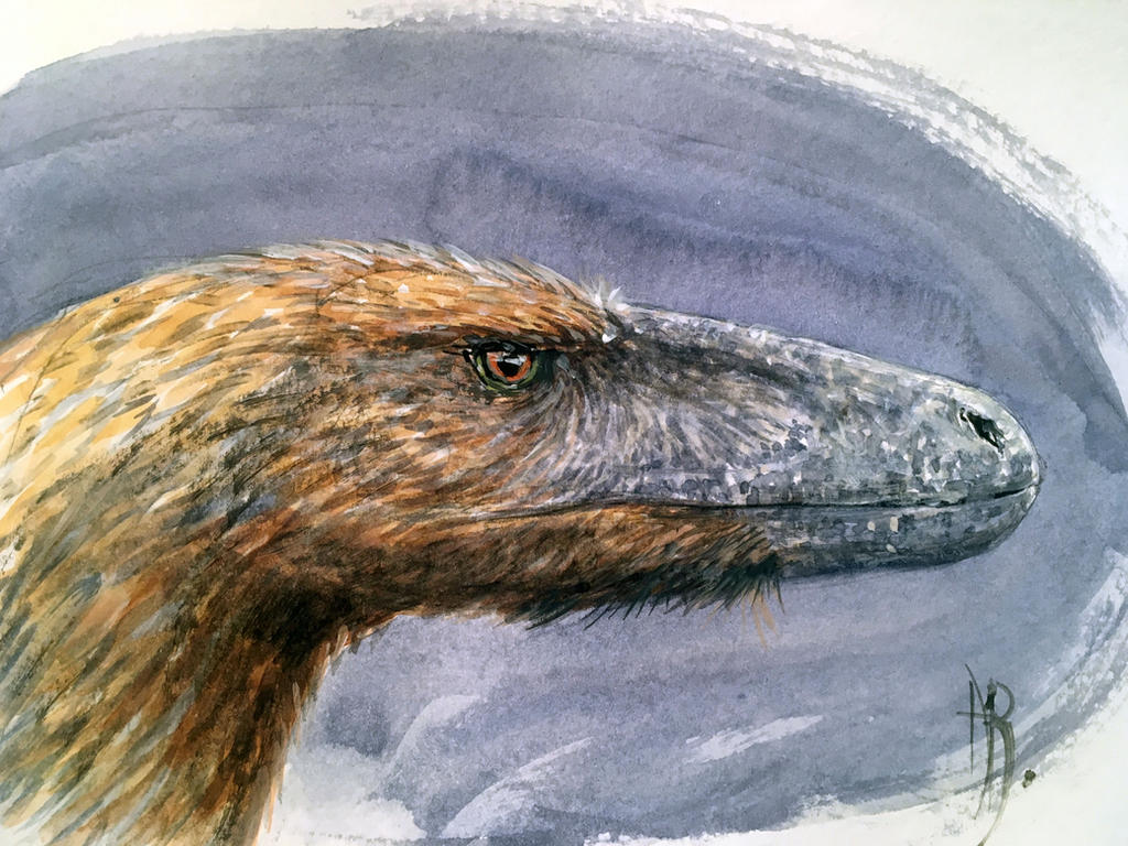 Deinonychus antirrhopus by dustdevil