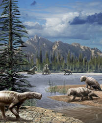 Permian fauna from France - Lodeve's basin
