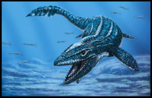 Prognathodon curii by dustdevil