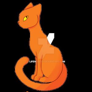 Ginger/Orange Cat