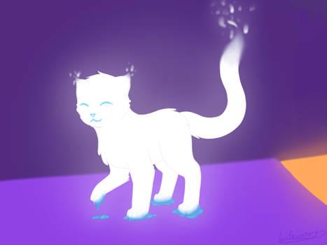 Cats are Liquid : Lumi