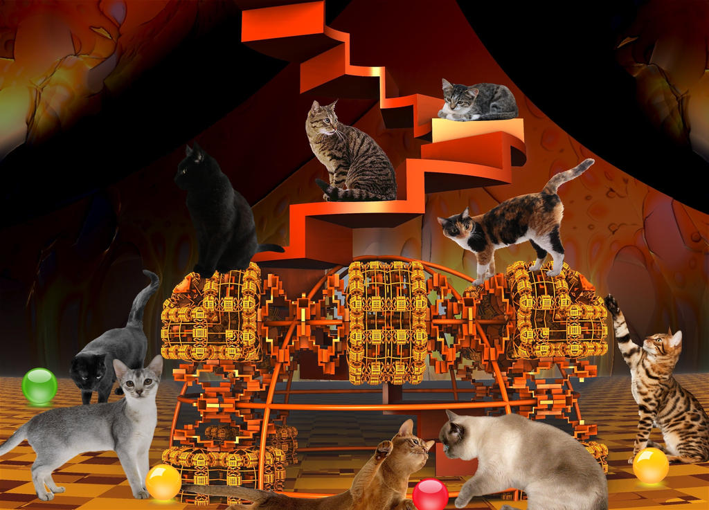 The cats in their playroom by BGai