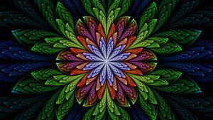 Wildflower 28-10-18 by BGai