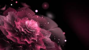 JWF Flower