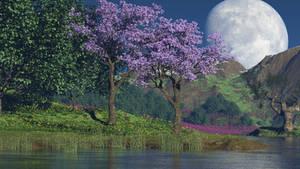 Untouched Beauty