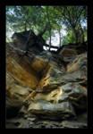 Hemlocks on a Cliff