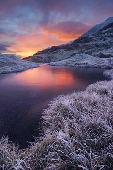 Frozen Cribau
