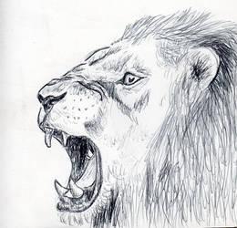 Lion Pen Sketch by Kezzamin