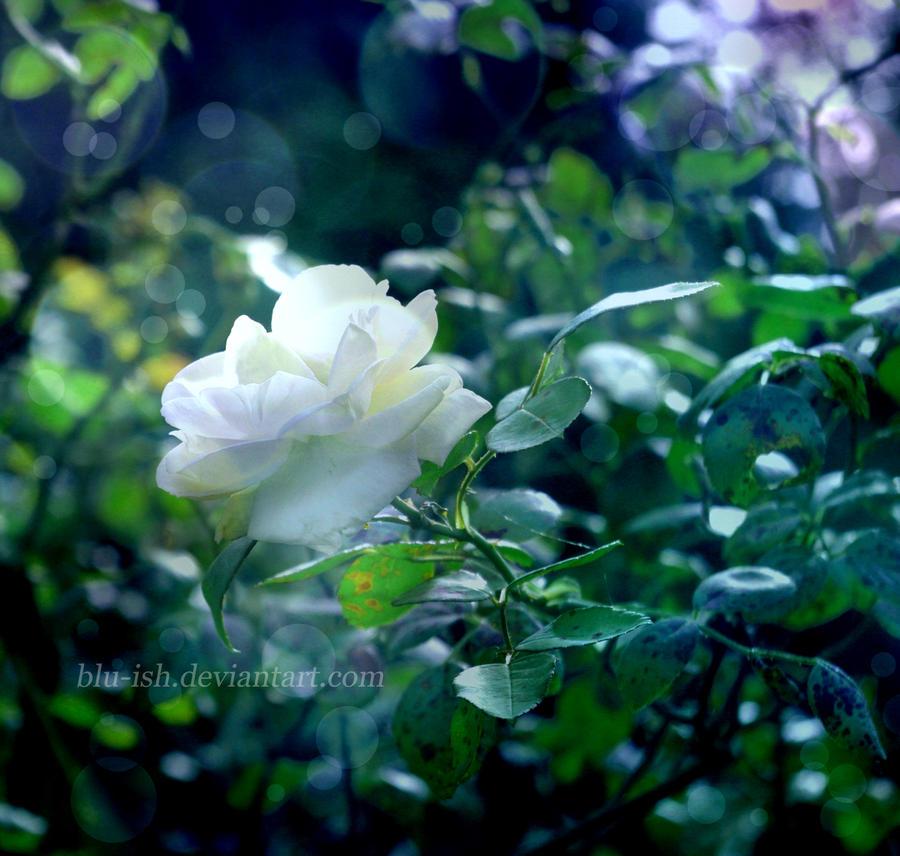 Sleeping Beauty by blu-ish