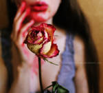 Blood on her roses by naked-in-the-rain