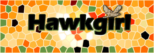 Hawkgirl banner by SavvyRed