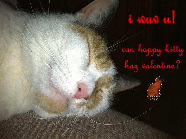 can happy kitty haz valentine? by SavvyRed