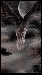 Dark Angel by Cicist