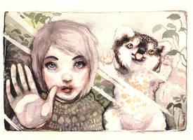 trap pets by veeae