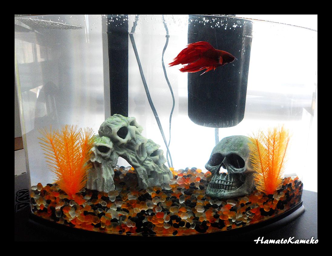 Halloween Aquarium by InkTheEchidna