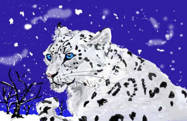 Snow Leopard by animalsketchsisfun