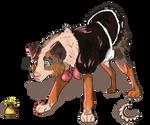 Lacy lassie