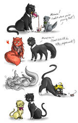 Cats by madelezabeth