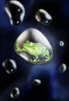 Bubbled frog