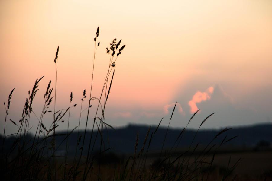 Countryside by maaanuel
