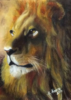 African King Lion