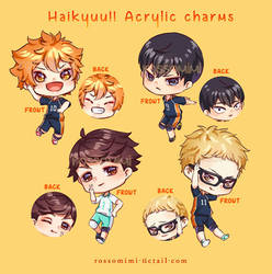 Haikyuu!! Acrylic charms
