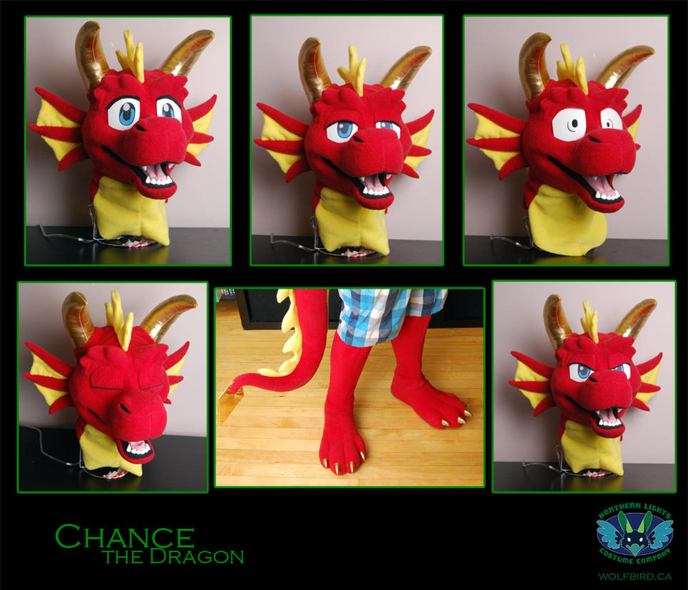 Chance's Expressions by Wolfbird
