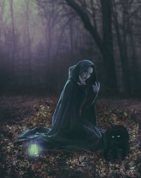 Witch of the Night
