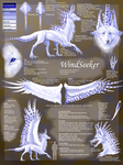 WindSeeker: 2008 Reference by WindSeeker