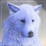 WindSeeker - 'Souls RP