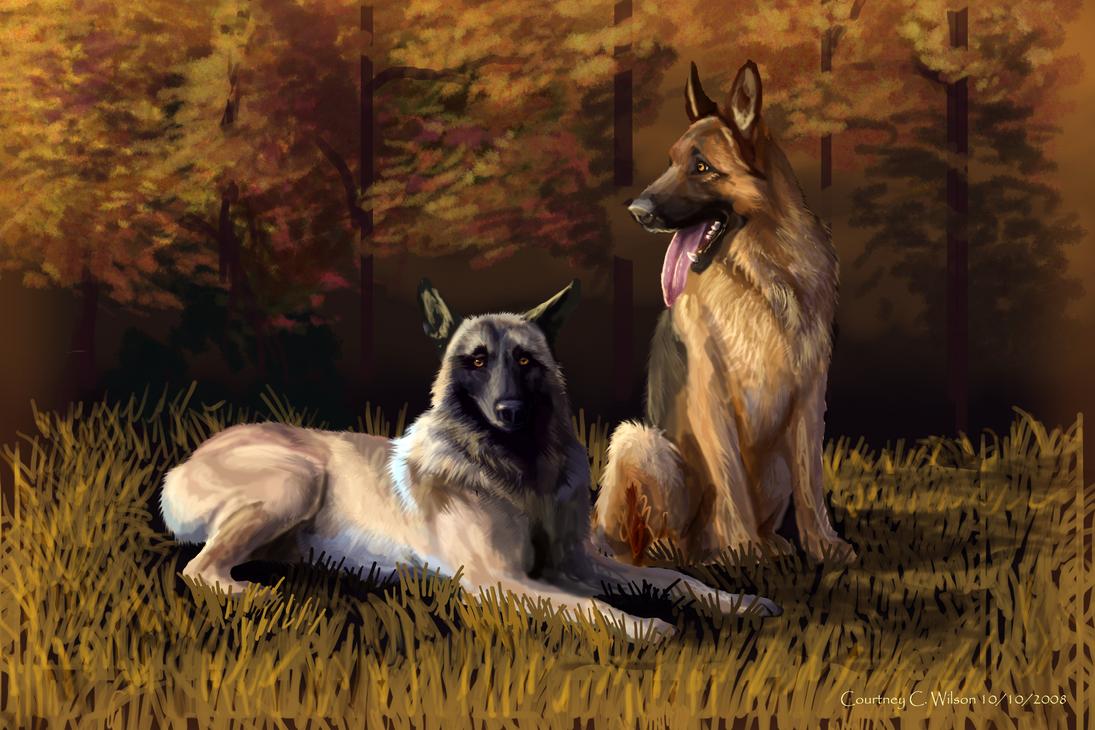 K-9 Dogs by WindSeeker