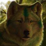 Sylvan Shadows - Paragon RP by WindSeeker