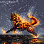 Wolf of Fire - Shayateen