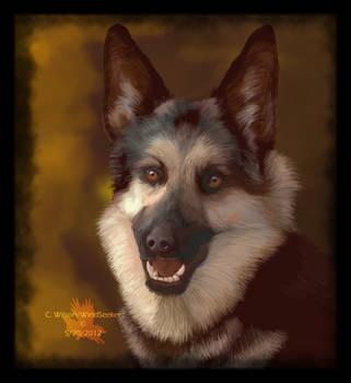 Felicia - Seeing Eye Dog by WindSeeker